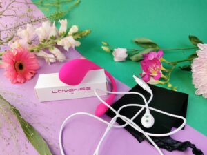 Le Lovense Lush 3, le câble de chargement et le sac de rangement